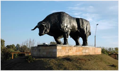 Visita a Paso de los Toros